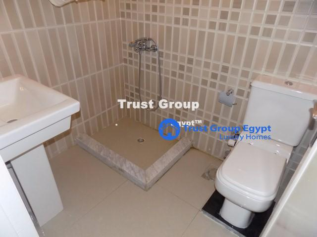 Real Estate Trust Group